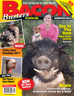 Bacon Busters magazine
